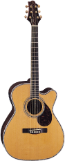 Greg Bennett Guitars OM-8CE
